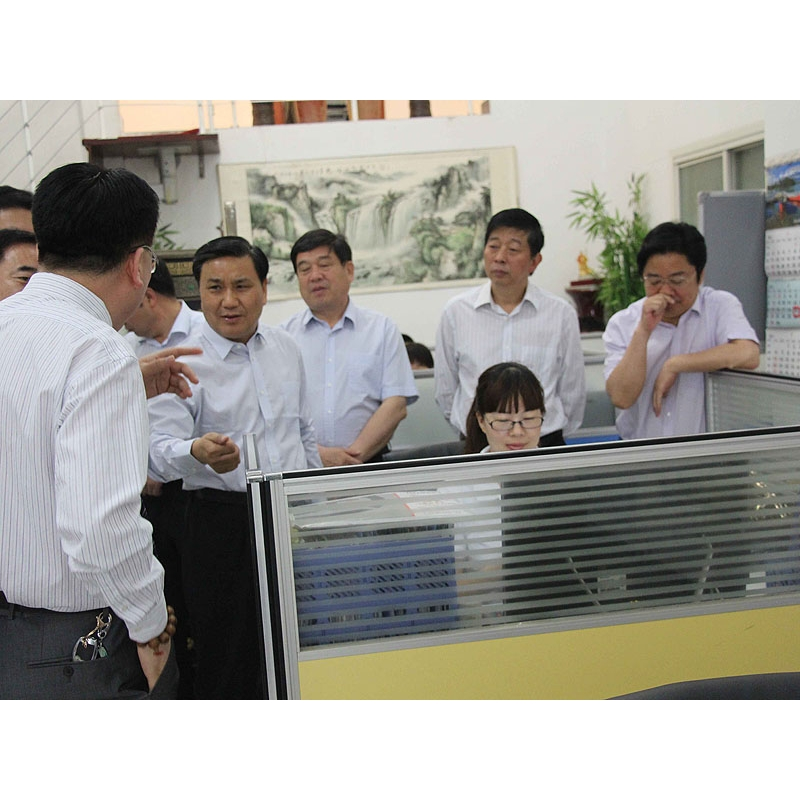 Xuchang City Mayor Visit our company3_seeing our website
